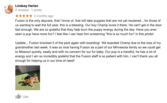 Fusion Pet Retreat Testimonial Positive Review 2